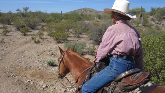 Rosie, trail boss, Effus Ranch